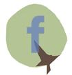 Facebook-PlusDeCoton