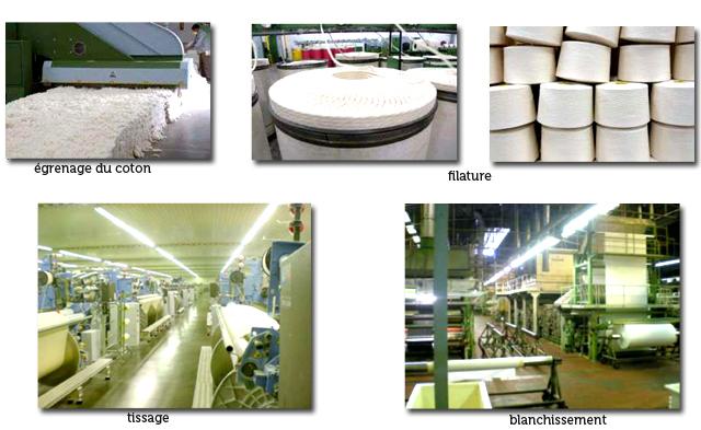 comment les fibres de coton bio deviennent une toile