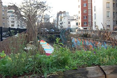 Potager urbain-Paris 18ème- Ma vie autrement