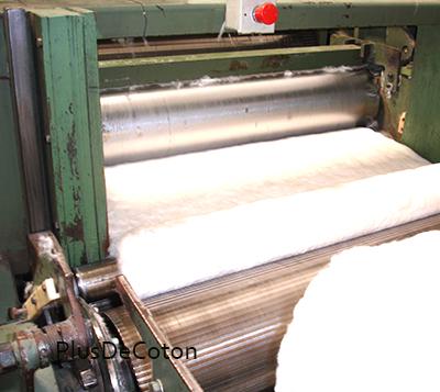 coton bio- préparation des fibres de coton